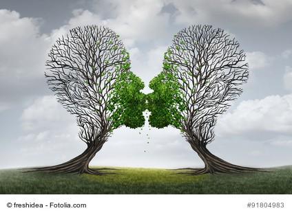 Küssende Bäume