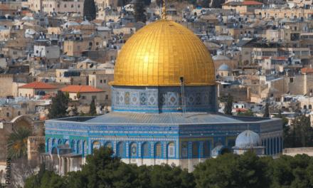 Auf dem Esel nach Jerusalem