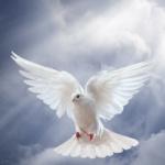 Gottes Frieden
