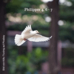 Gebet schafft Frieden