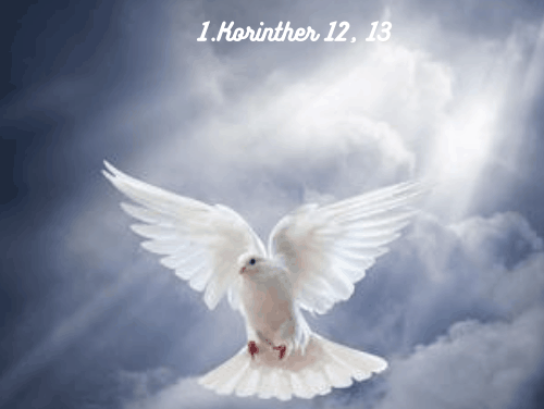 Wir sind sichtbares Zeugnis von Jesus in dieser Welt