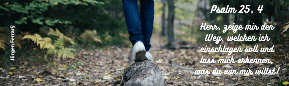 Balancieren auf einem liegenden  Baumstamm