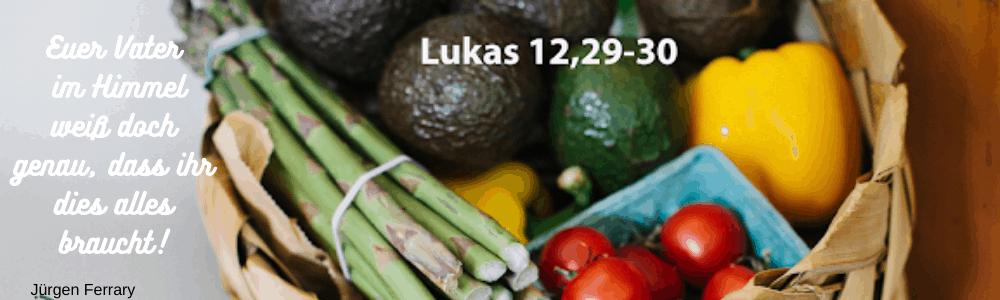 Ein Korb voller Gemüse