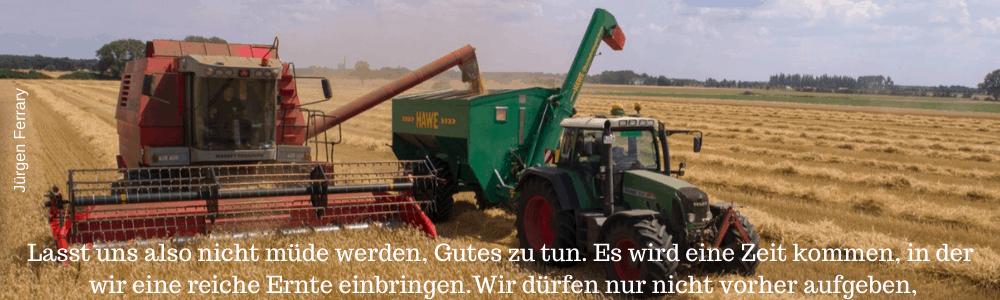 Ernteeinsatz mit dem Traktor