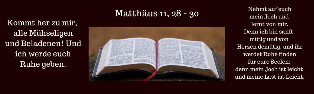 aufgeschlagenes Buch - Bibel