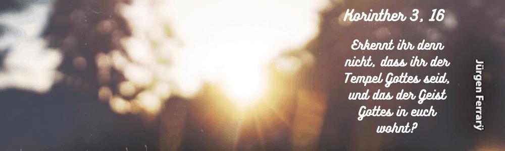 defuses LIcht - Sonnenschein