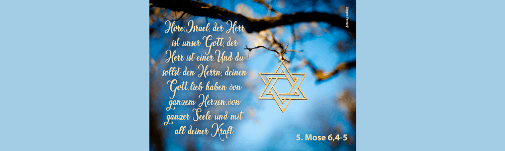 Judenstern hängt am Baum