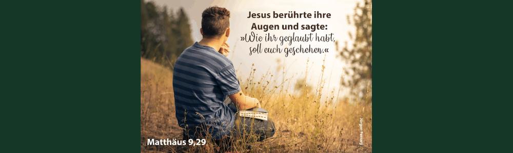 Mann sitzt in der Natur mit der Bibel
