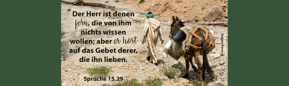 Mann läuft mit Esel durch die Wüste
