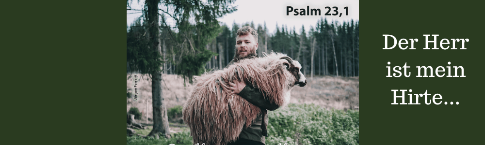 Hirte trägt Schaf