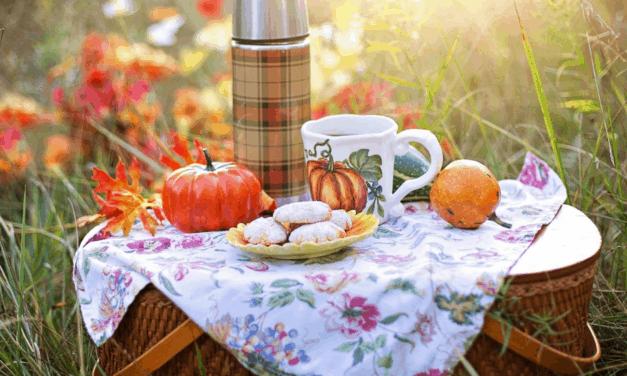 Tag des Picknicks
