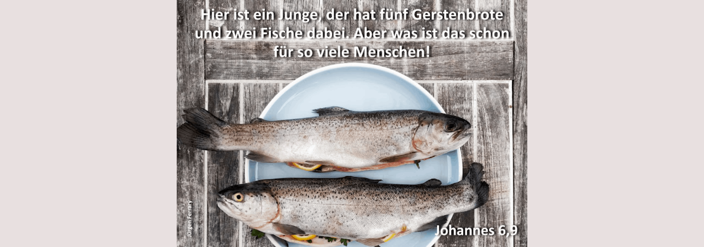 zwei Fische auf einem Teller