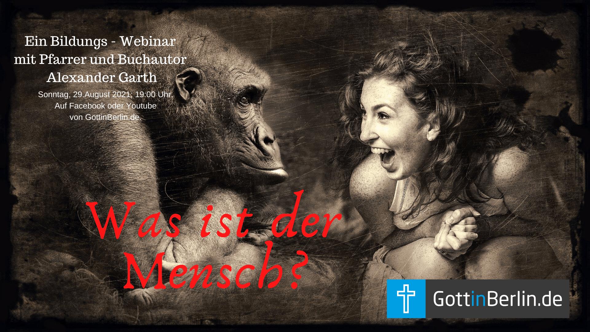 Frau lacht Gorilla an