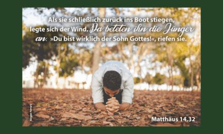 Da beteten die Jünger Jesus an …