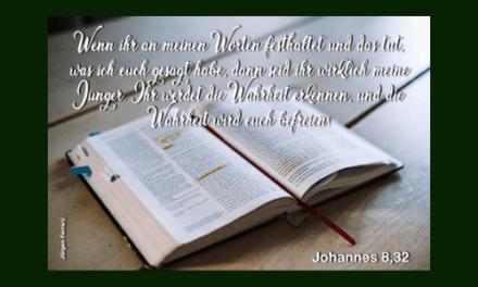 Bibellesen – Mehr als eine Pflichtübung?