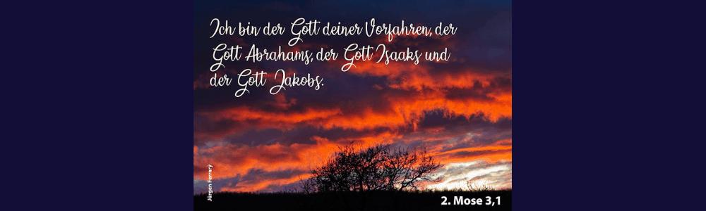 Abendhimmel mit roten Wolken und Dornbusch